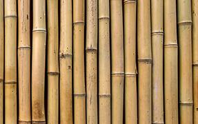 Printelt irodai üveg térelválasztó bambusz mintával